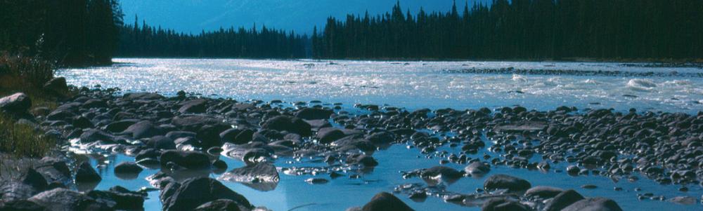 Mackenzie River Basin Board