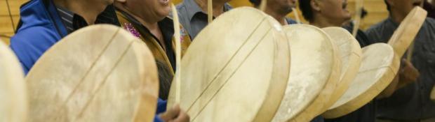 Aboriginal Steering Committee_Temp image