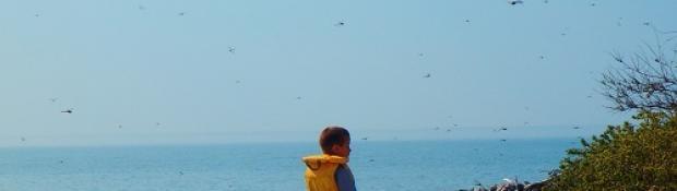 boy in life jacket